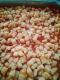 La Pasta Di Flo - image 5