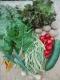 Les Légumes  De Laura - image 1