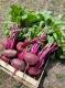 Les Légumes Du Pote à Gers - image 3