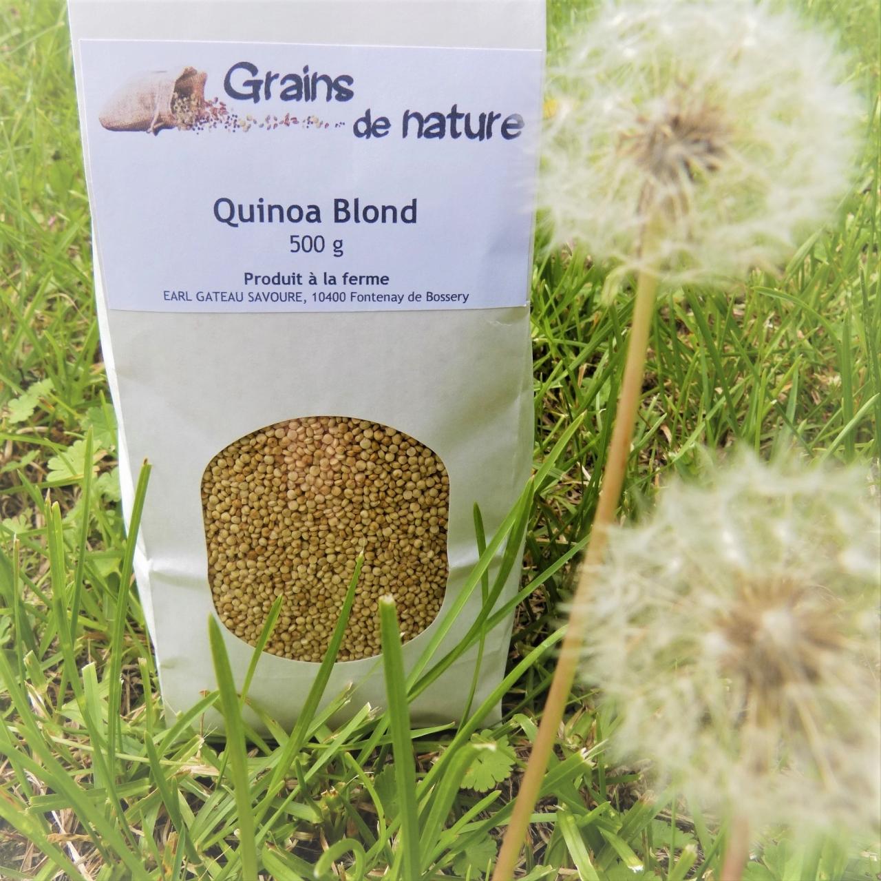 Lentilles noires beluga 250g - 250 g - Grains De Nature ...