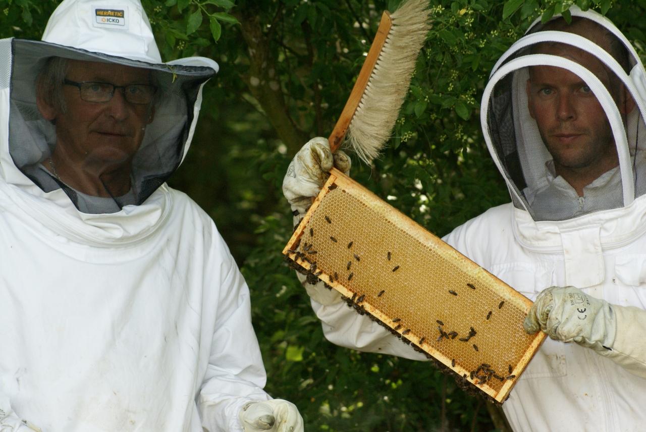 apiculteur thomas