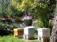 Le Rucher De La Riviere Aux Roseaux - image 1