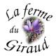Safran De Launay - image 4