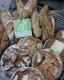 Boulangerie De La Gare - image 1