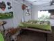 L'escargot De La Ferme Du Lomont - image 4
