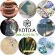 Kotoia - image 1
