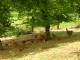 La Ferme Des Perrelles - image 1