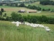 La Chèvre Du Bancel - image 2