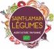 Logo Saint Lamain Legumes