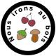 Logo Nous Irons Au Bois
