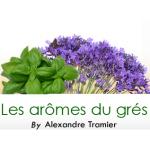 Logo Les Arômes Du Grés
