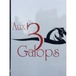 Logo Aux 3galops