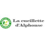 Logo Kere Alphonse