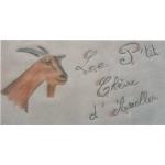 Logo P'tit Chèvre D'arrelles