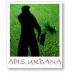 Logo Apis Urbana