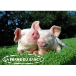 Logo Ferme Du Sancy