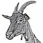 Logo La Ferme De Roch Conan