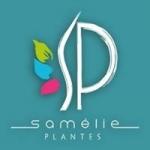 Logo Samélie Plantes