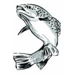 Logo Eau Doubs Poissons