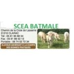 Logo Scea Batmale