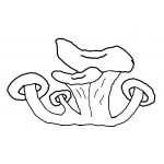 Logo Champimignon Earl Depretto