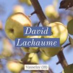 Logo Lachaume David