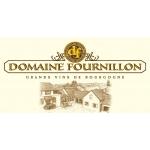 Logo Domaine Fournillon