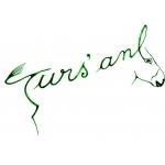 Logo Turs'ane