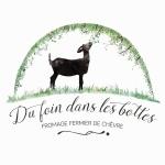 Logo Earl Du Foin Dans Les Bottes