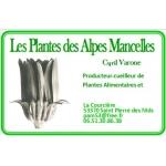 Logo Les Plantes Des Alpes Mancelles