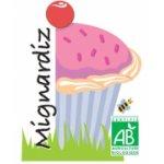 Logo Mignardiz