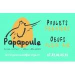 Logo Papapoule
