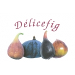 Logo Delicefig Earl