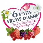 Logo Ô P'tits Fruits D'anne