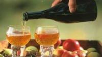 Cidre fermier tradition - 75cl
